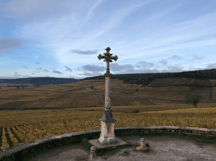 Clos de la Croix de Pierre, walled vineyard, Louis Jadot