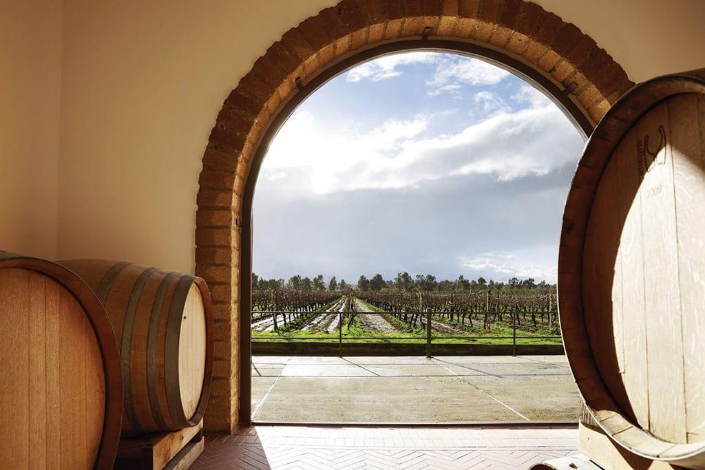 Villa Matilde winery, Campania, Italy