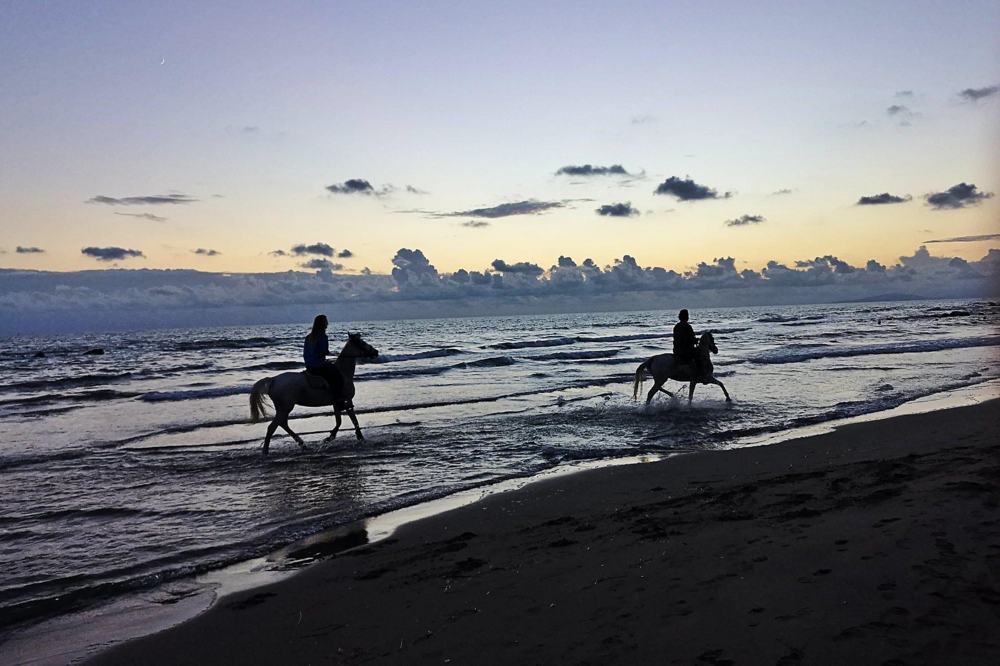 Maremma, Italy, horses, beach