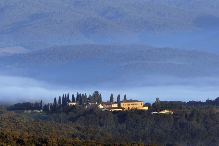 Montalcino, Tenute Silvio Nardi, Tuscany, winery, Italy