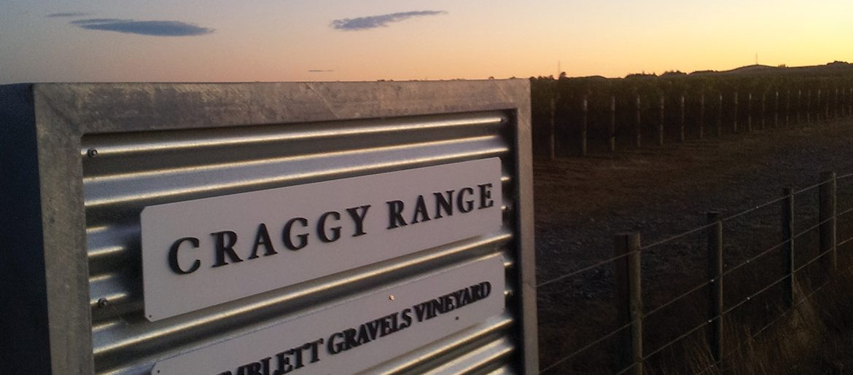 Craggy Range Vineyard