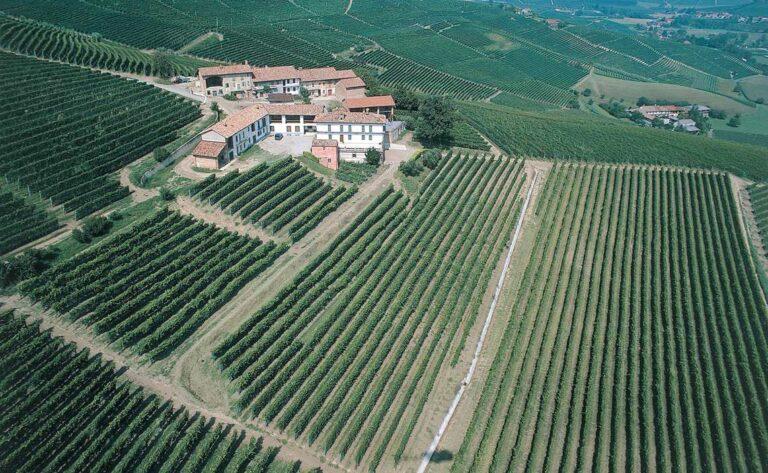Michele Chiarlo aerial vineyard view of Cerequio in Piedmont, Italy