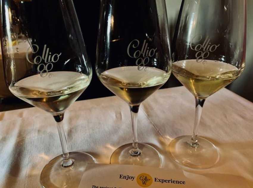 Collio wines