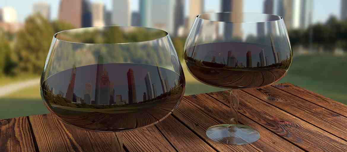 Wide Large Pinot Noir Glasses