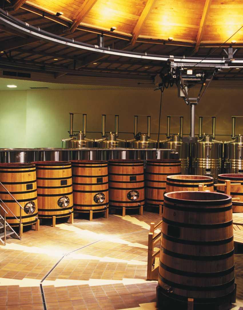 Wine barrels at Louis Jadot