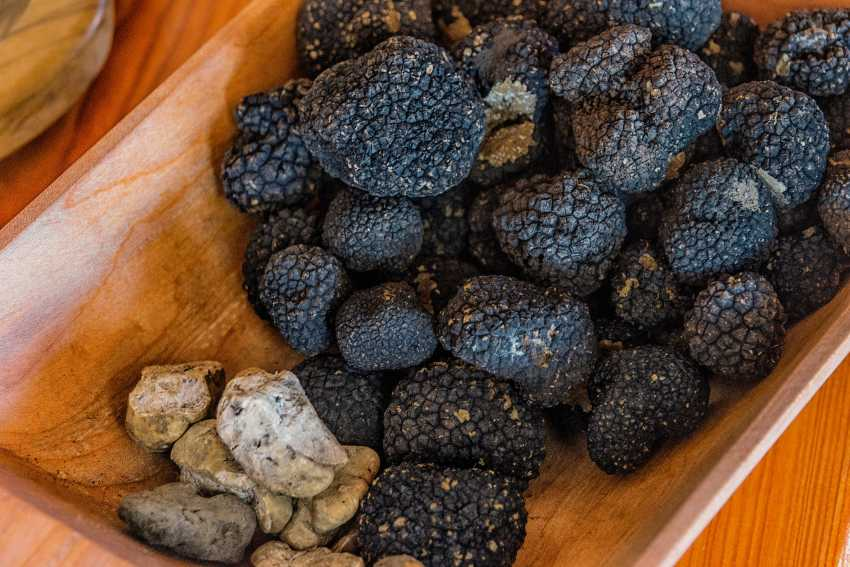 Box of white and black truffles